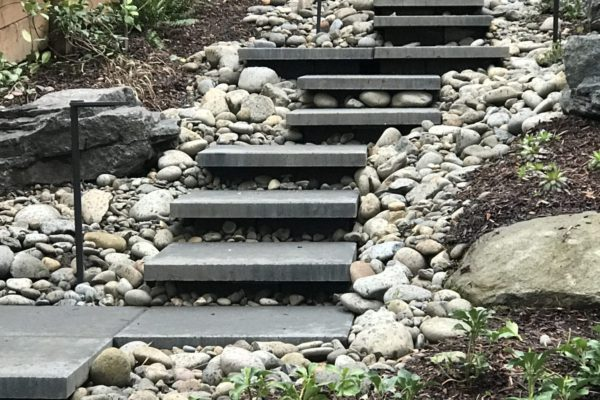 wpd-steps-rev